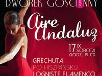 Aire Andaluz- Grechuta po hiszpańsku i ogniste flamenco
