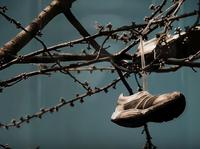 Piąte video promujące #Freenitaz