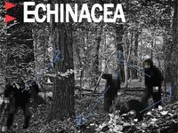 Echinacea - Dobranoc (feat. Eldo) - premiera teledysku