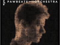 """Pawbeats udostępnia videorelację z prac nad """"Orchestrą"""""""