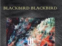 URBAN HEROES : BLACKBIRD BLACKBIRD (USA)