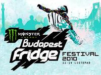 Polacy na Fridge Festival w Budapeszcie