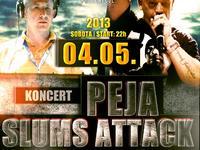 Koncert Slums Attack - trasa Całkiem Nowy Tour 2013 - Solingen