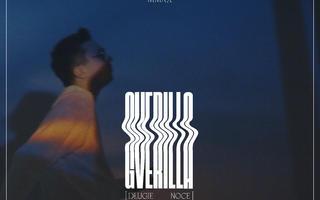 Gverilla, Lena Osińska, Steez83 i Symer we wspólnym singlu